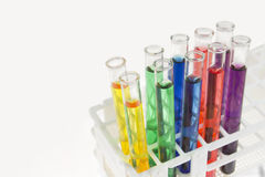 Colorful test tubs in rack Royalty Free Stock Photos
