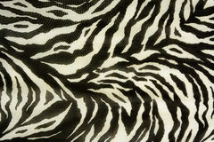 Colorful textures of tiger. Used as raw material in publications and businesses Royalty Free Stock Images