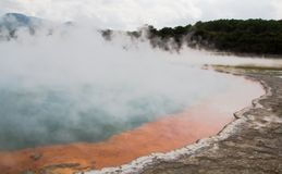 Colorful Thermal Pool in New Zealand Stock Photography