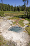 Colorful Thermal Pool in the Wilderness Stock Image