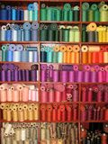 Colorful threads in rows on shelf for sewing or weaving projects. Bright threads and yarns sorted by colors line wooden shelves Royalty Free Stock Images