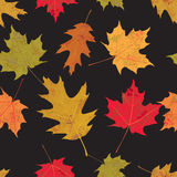 Colorful Tileable Autumn Leaves Illustration Stock Images