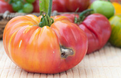 Colorful Tomato Ruined by a Wormhole Stock Image