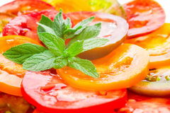 Colorful Tomato Slices with green branch of mint Stock Photos