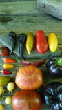 Colorful tomato 1. Tomatoes, cucumbers and chili on roks Stock Photography