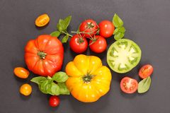 Colorful tomatoes and basil. Above Royalty Free Stock Photo