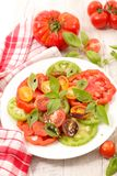 Colorful tomatoes and basil. Tomato salad and fresh basil Royalty Free Stock Images