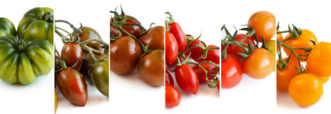 Colorful tomatoes collage Stock Photo