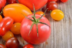 Colorful tomatoes. Royalty Free Stock Image