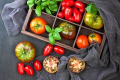 Fresh colorful delicious tomatoes Royalty Free Stock Photos