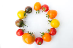 Colorful tomatoes. Fresh colorful tomatoes on a white background. Yellow, red, pink, orange and black tomatoes Royalty Free Stock Image