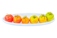 Colorful tomatoes isolate white background with clipping path Stock Photography