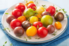 Colorful tomatoes in plate on blue background Stock Image