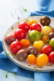 Colorful tomatoes in plate on blue background Royalty Free Stock Photo
