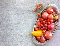 Colorful tomatoes red tomatoes yellow tomatoes orange tomatoes with water drops on the dark concrete background. Space for text se Stock Photo