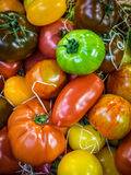 Colorful tomatoes on sale. Fresh red, brown, yellow and green ripe tomatoes in wooden baskets on sale on a farmers Borough Market in London Stock Photography