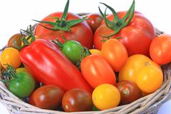 Colorful tomatoes Stock Images