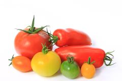 Colorful tomatoes Stock Image