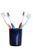 Colorful toothbrushes in holder Stock Image