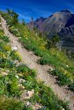 Colorful Trail. Two Medicine Valley, Glacier National Park, Montana Stock Photo