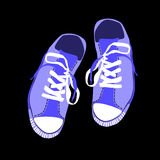 Colorful Training Sport Shoes Foot Wear Royalty Free Stock Image