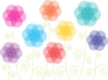 Colorful transparent flowers Royalty Free Stock Photo