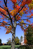 Colorful tree and historic church Royalty Free Stock Photos