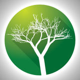 Colorful Tree Icon Royalty Free Stock Photography