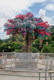 Colorful tree. Up in the hill Royalty Free Stock Photography