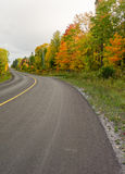 Colorful trees along the road in fall Stock Images