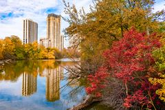 Free Colorful Trees And Plants Surrounding North Pond In Lincoln Park Chicago During Autumn Stock Images - 153691854