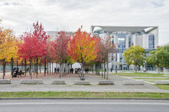 Colorful Trees Stock Photography
