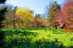 Colorful trees in countryside Stock Photos