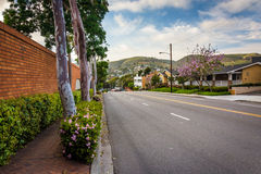 Colorful trees and flowers along Glenneyre Street stock photo