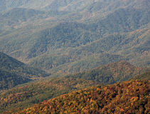 Colorful trees in Great Smoky Mountains National Park Royalty Free Stock Photos