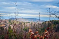 Beautiful autumnal mountain landscape. royalty free stock images
