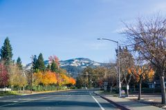 Colorful trees lining up a road through Danville, Mt Diablo summit in the background. Contra Costa county, San Francisco bay area, California Royalty Free Stock Image