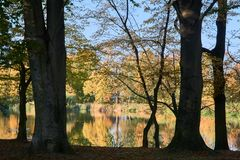 Colorful trees on the pond in the park. During autumn in Poznan Royalty Free Stock Images