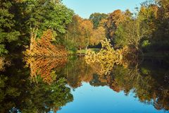 Colorful trees on the pond in the park. During autumn in Poznan Stock Photography