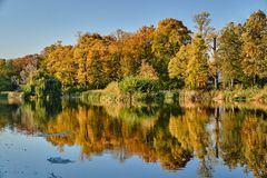 Colorful trees on the pond in the park. During autumn in Poznan Stock Image