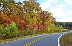 Colorful Trees on the Side of a Curving Mountain Road. Autumn colors along the side of a peaceful, curving mountain road with no cars royalty free stock photography