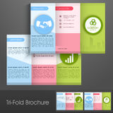 Colorful trifold brochure, flyer or template for business. Stock Images