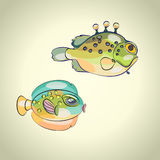 Colorful tropical fish. Two colorful tropical fish with funny face Royalty Free Stock Photos