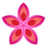 Colorful tropical flower icon. Vector illustration design stock illustration