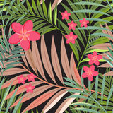 Colorful tropical flower, plant and leaf pattern background Royalty Free Stock Photos