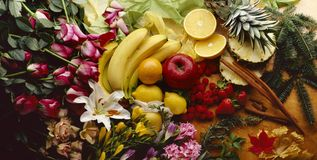 Colorful tropical flowers and fruit Stock Images