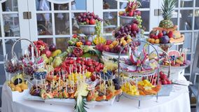 Colorful Tropical Fruit Buffet. On celebrate stock video footage