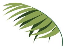 Colorful tropical leaf icon. Vector illustration design vector illustration