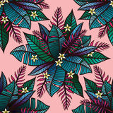 Colorful tropical pattern with exotic plants Royalty Free Stock Image