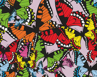Colorful tropical seamless pattern -butterflies Stock Photography